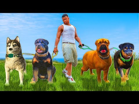 Play as Different Animals in GTA 5's New Hallucinations ... |Gta 5 Dog Breeds