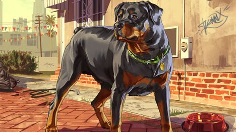 GTA V: Dog - Orcz.com, The Video Games Wiki |Gta 5 Dog Breeds