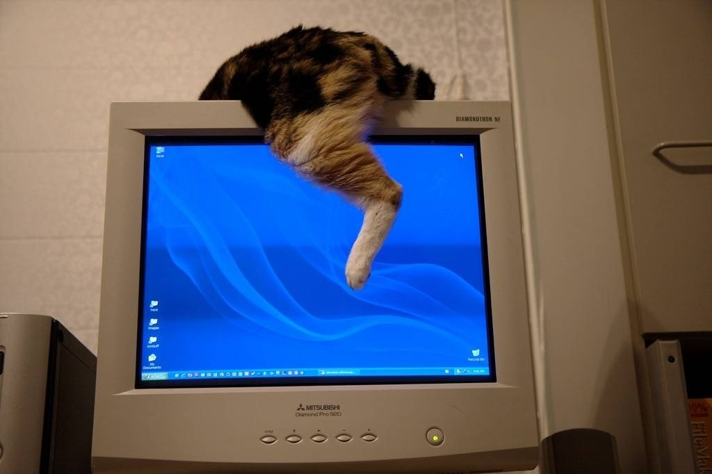 what makes crt monitor disposal dangerous for a technician who is handling the disposal?-2
