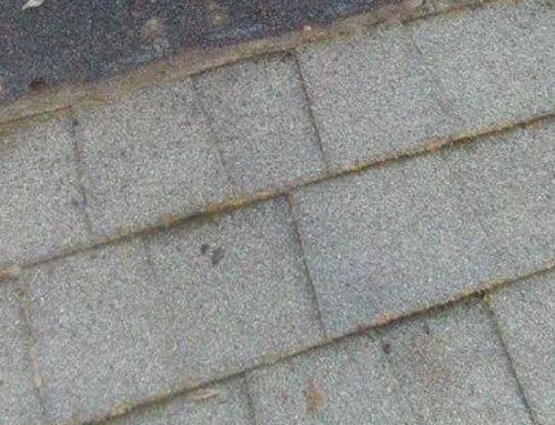 who is responsible for roof repairs in a townhouse-2
